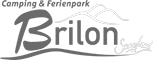 Logo Brilon